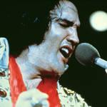 Elvis Presley live on stage
